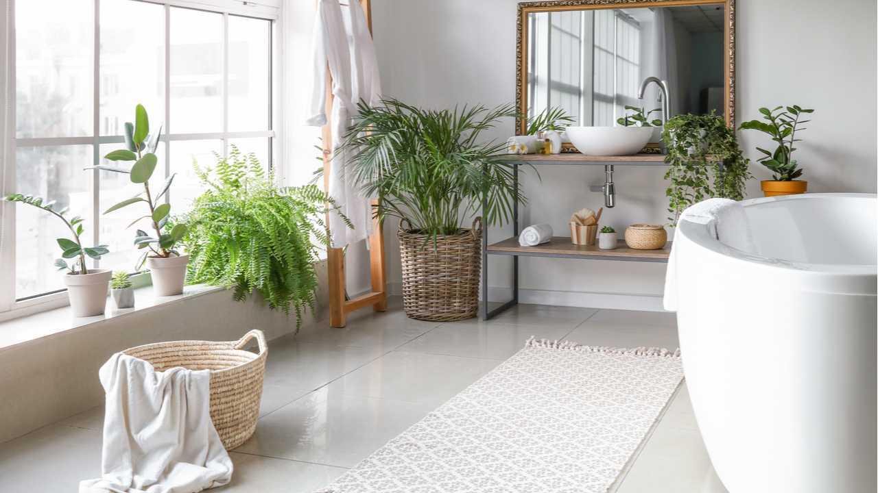 18 Pflanzen für das Badezimmer