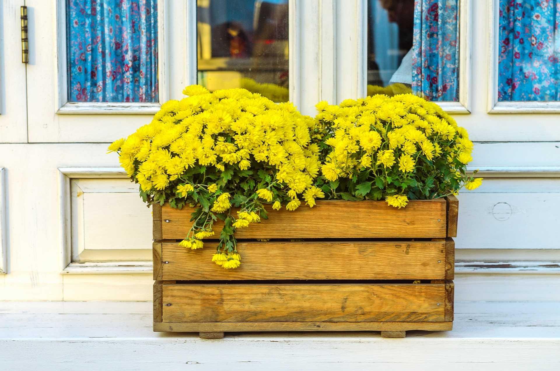 Blumenkästen aus Holz: 3 naturbelassene Blumenkästen für einen natürlichen Außenbereich