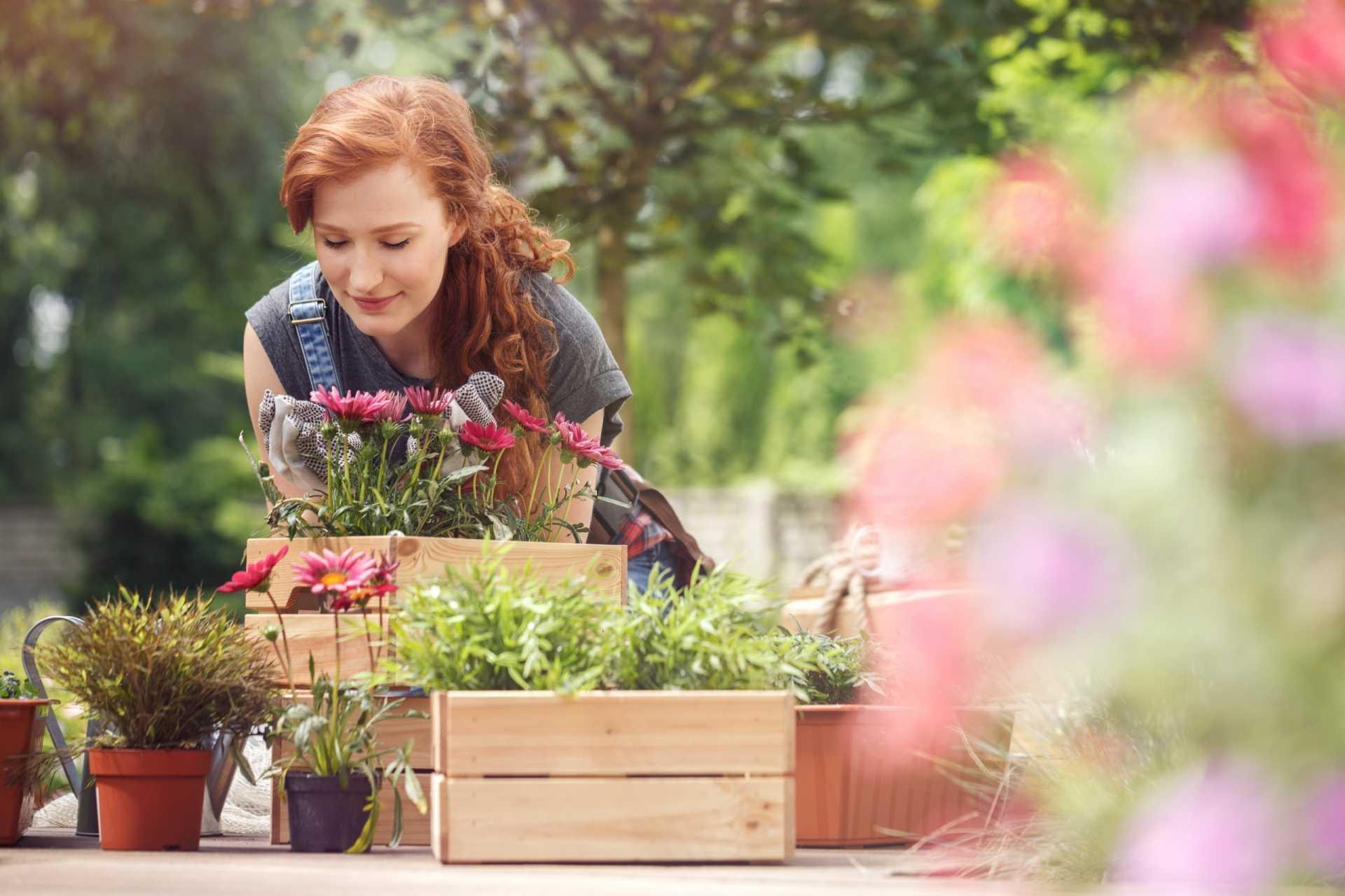 3 Sitztruhen als praktische und komfortable Ergänzung für die Garteneinrichtung
