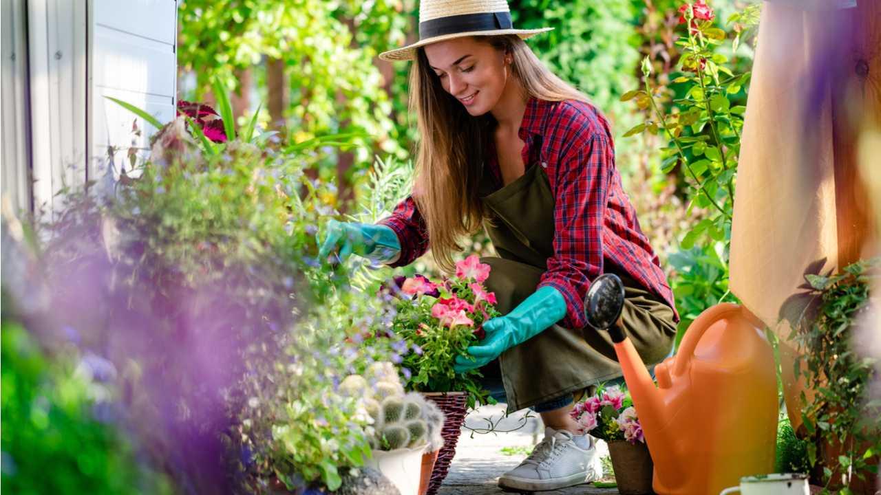 Die passende Kleidung für die Gartenarbeit