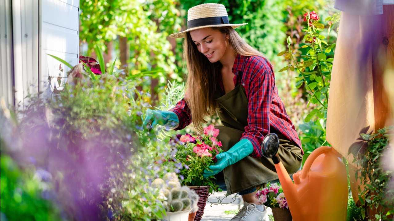 13 Fehler bei der Gartenarbeit – Tipps für Anfänger