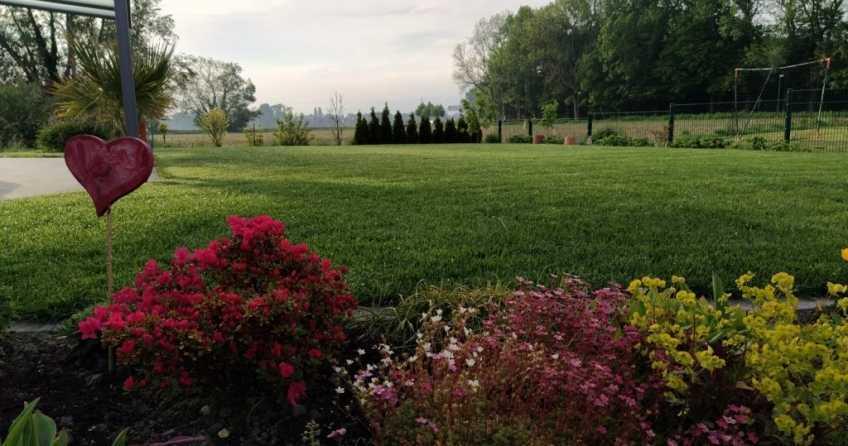 Automatische Gartenbewaesserung sorgt für Erleichterung im Alltag und führt zu wundeschönem Rasen!