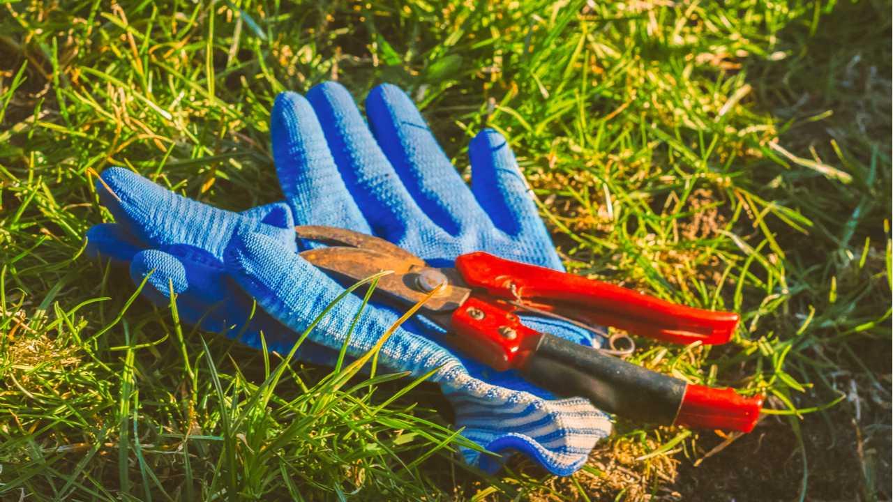 Gartengeräte lagern – der Keller als Aufbewahrungsort für Gartenutensilien