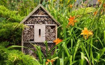 15 kreative Ideen für die Vorgarten Gestaltung