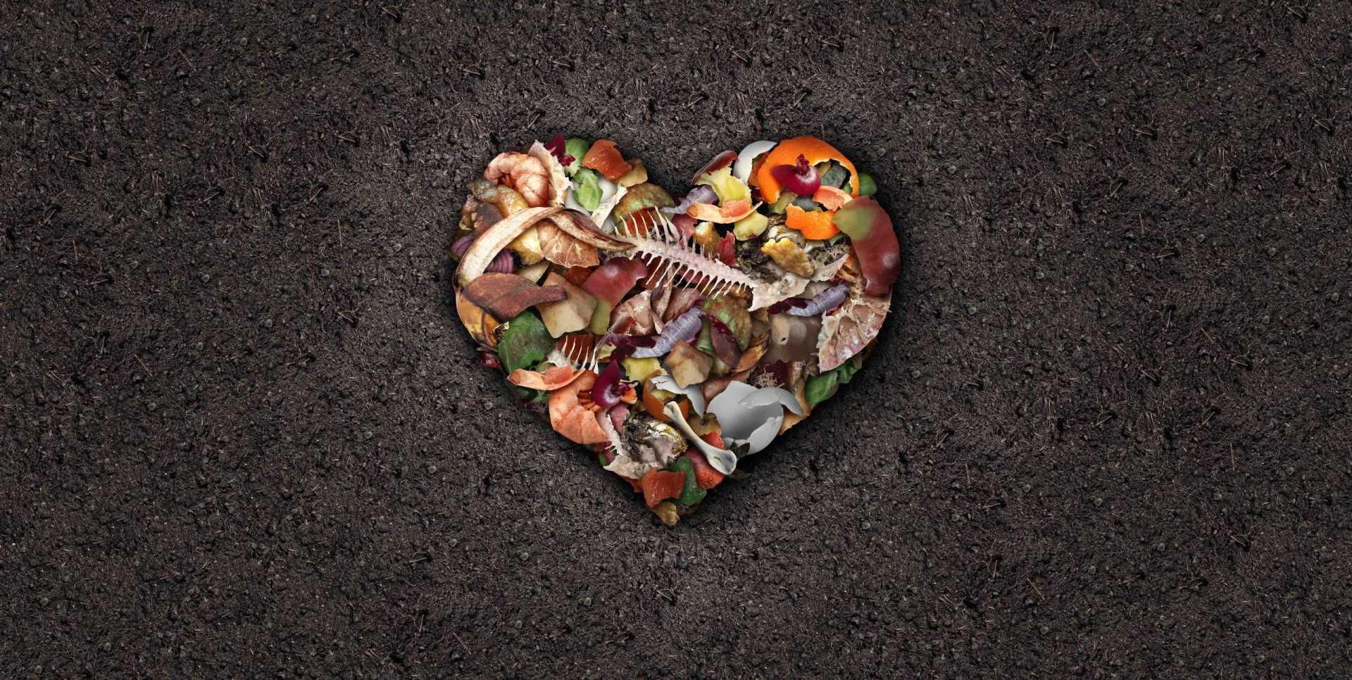 10 Kompost anlegen Fehler: Zum optimalen Kompost durch Fehlervermeidung