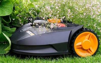 Gepflegter Rasen ohne Stress!