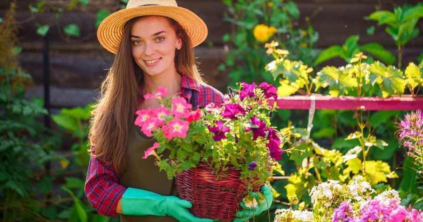 Petunien Pflege ist eigentlich ganz einfach. WIr zeigen Ihnen den richtigen Standort, wie Sie richtig gießen, düngen und wie Sie Petunien vermehren.