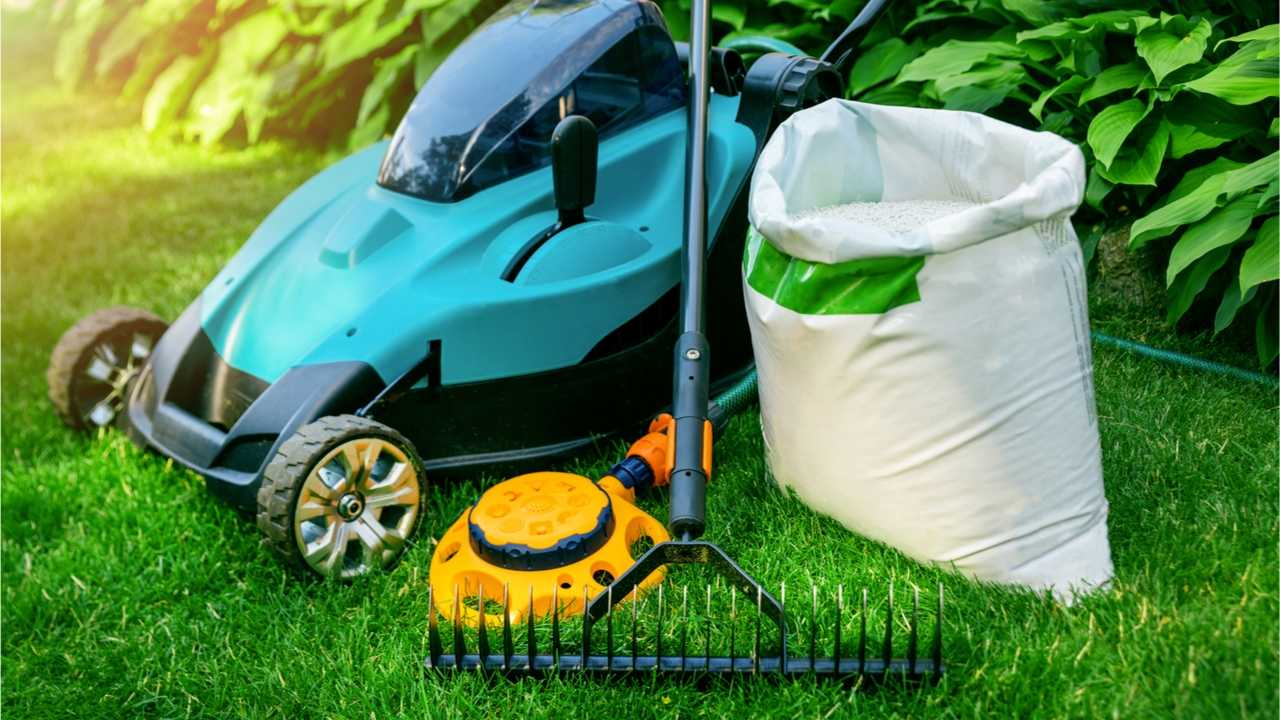 Rasen vertikutieren: Diese Dinge sollten Sie beachten