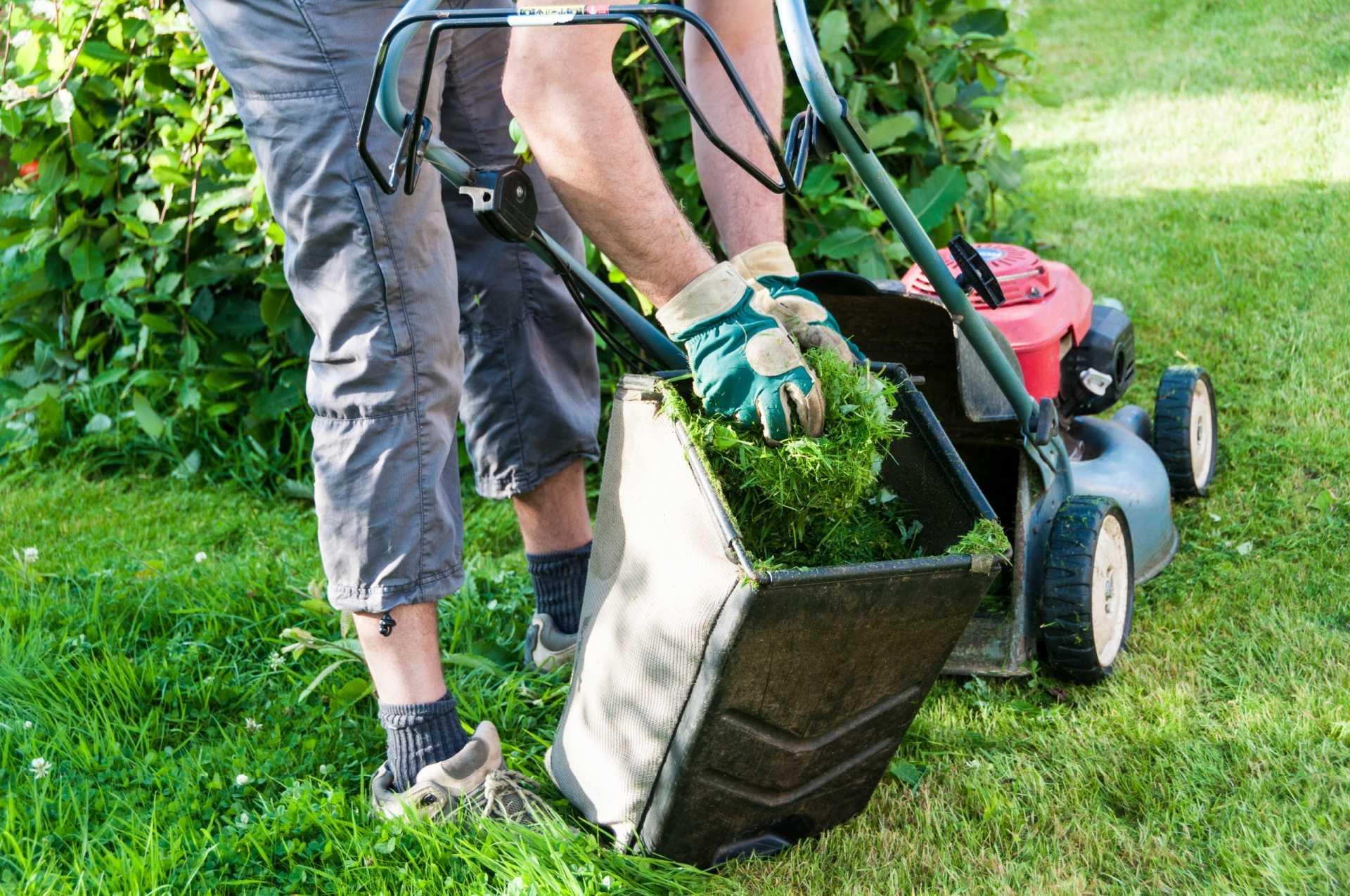 Rasenpflege im Frühjahr – Das ist zu beachten