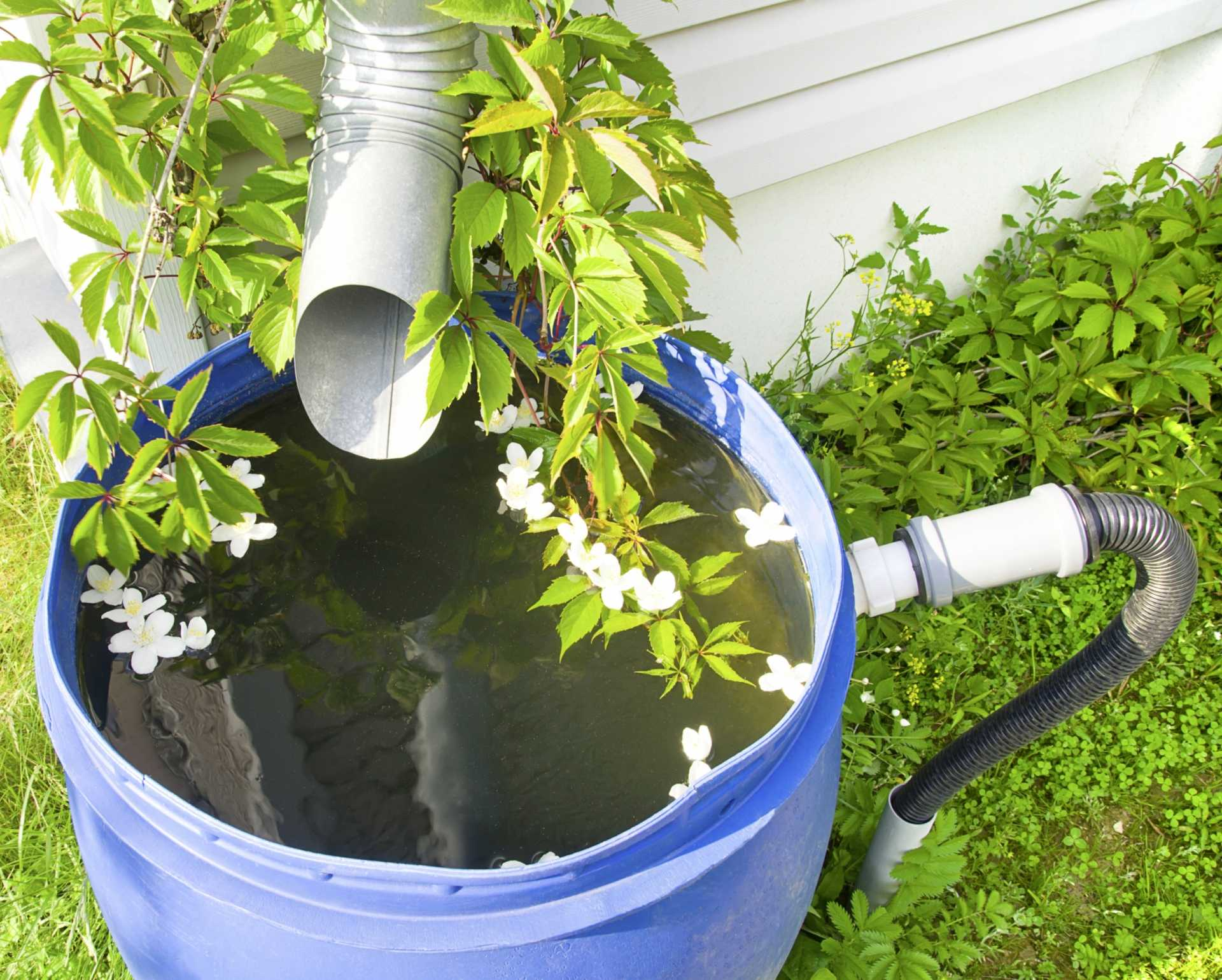 3 Regentonnen für eine  Bewässerung des Gartens mit Regenwasser