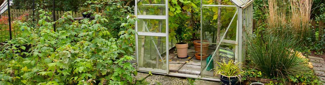 Gewächshaus klein im Garten und auf der Terrasse