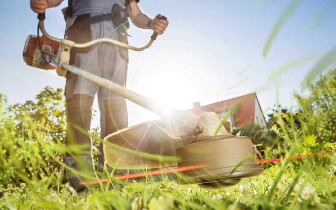 Die 3 besten Akku-Grasscheren im Vergleich – finden Sie die perfekte Grasschere für Ihren Garten – Unser Vergleich und Ratgeber