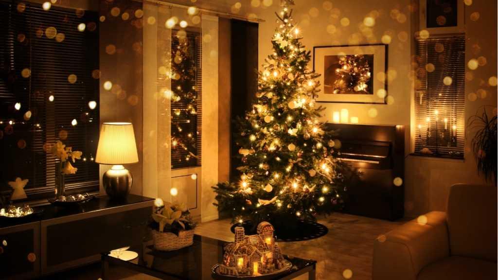 Lichterkette 8 Ideen Zum Weihnachtlich Dekorieren Haus Garten Profi