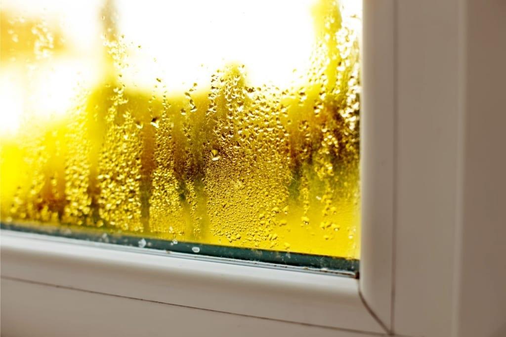Vor allem feuchte Räume sind anfällig für Schimmel.