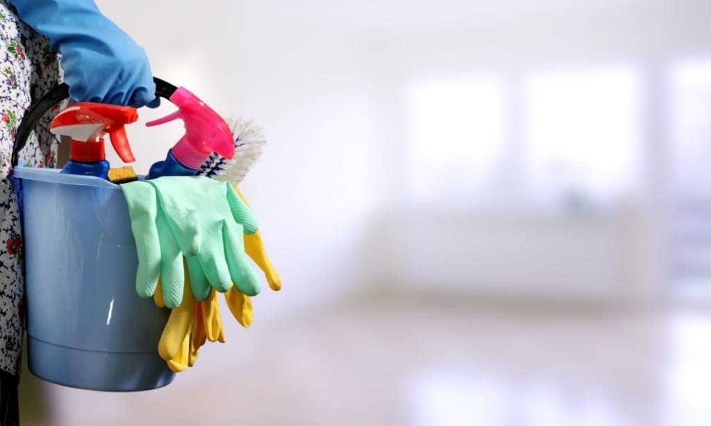 Motten im Haus bekämpfen mit gründlicher Reinigung.