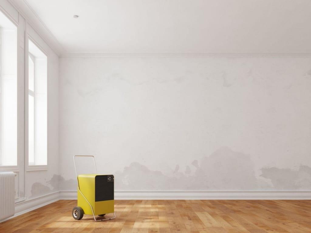Trocknungsgeräte helfen den Schimmel zu beseitigen.
