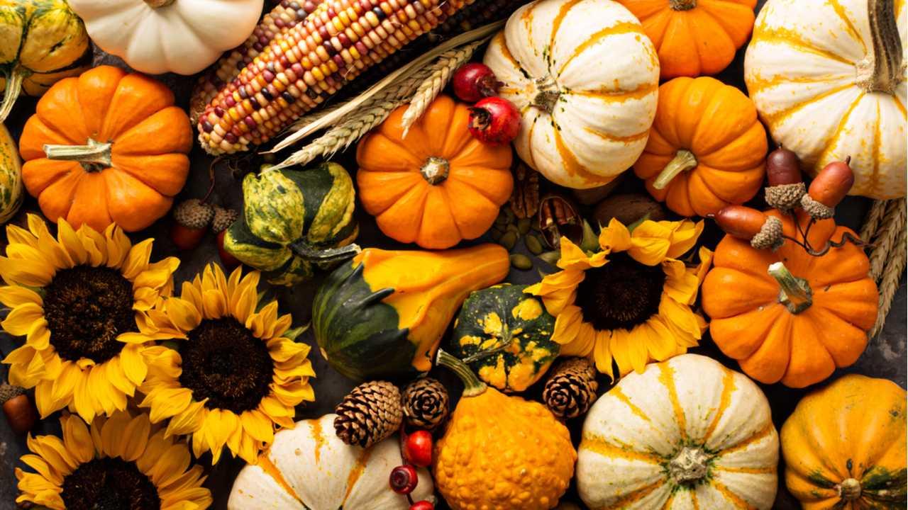 10 vegane Kürbis Rezepte – Jetzt kann der Herbst kommen!